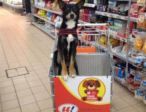 Sử dụng quảng cáo POSM tại siêu thị để bán hàng theo phong cách sáng tạo – độc – lạnhất
